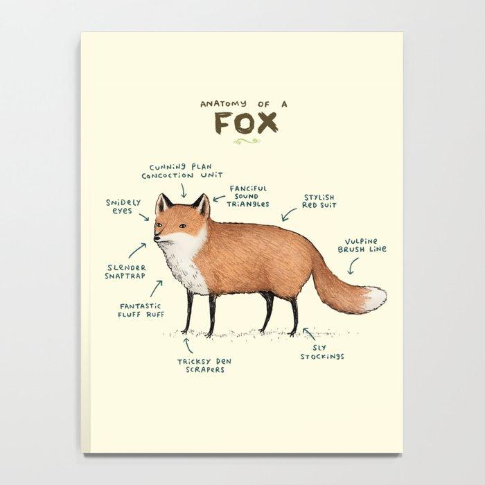 Anatomy of a Fox Notebook