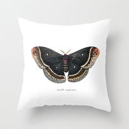 Calleta Silkmoth  (Eupackardia calleta) Throw Pillow