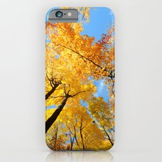 Fall Forest Sky iPhone 6s Slim Case