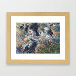 White Storks at Sunrise Framed Art Print