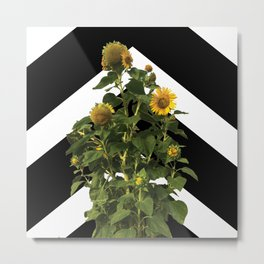 Sunflower Chevron Metal Print