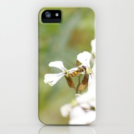Hoverfly and White Flowers iPhone Case