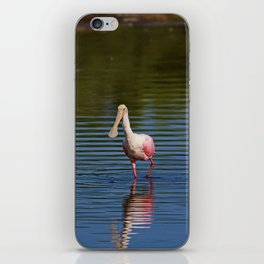 Roseate Spoonbill at Ding I iPhone Skin