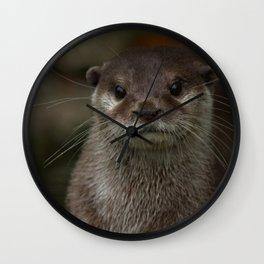 Curious Otter Wall Clock