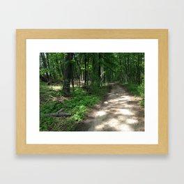 Path to the Sylvan Village Framed Art Print