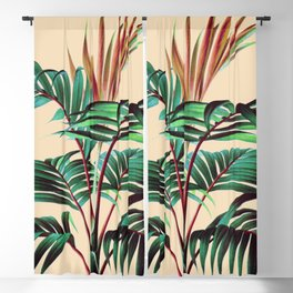 Tropic 02 Blackout Curtain