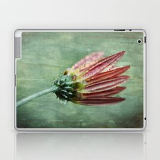 Vintage Daisy in the Rain Laptop & iPad Skin
