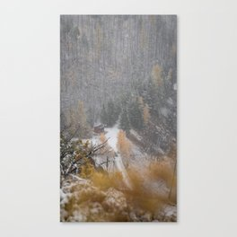 Burried in snow Canvas Print