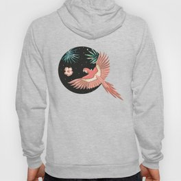 Pink macaw parrots on the starry night sky Hoody