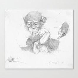 Curious Chimp Pencil Drawing Canvas Print