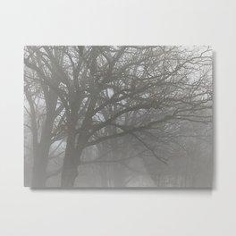Trees in the Mist Metal Print