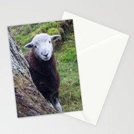 Herdwick Sheep Stationery Cards