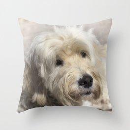 Dog Goldendoodle Golden Doodle Throw Pillow
