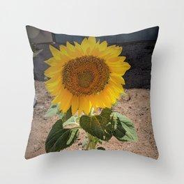 Sunflower Sentinel Throw Pillow