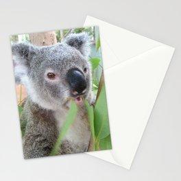 Yum! Yum! Stationery Cards