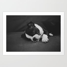 Puppy Love Art Print