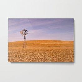 Ripening Cereal Rural Landscape in Australia Metal Print