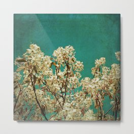 White Blossoms on Teal Blue Green Metal Print