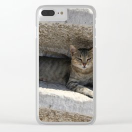 Guardian Of The Ruins Clear iPhone Case