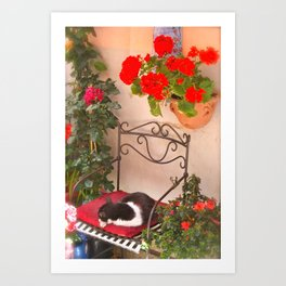 Italian Cat-Cinque Terra Art Print