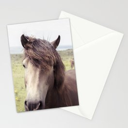 Welsh Horse Stationery Cards