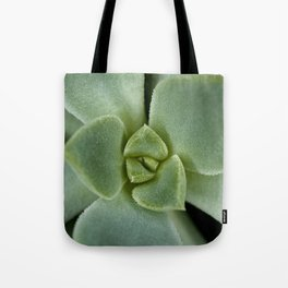 Succulent close up 4211 Tote Bag