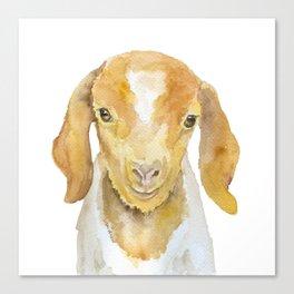 Nubian Goat Head Watercolor Canvas Print