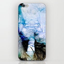 Winter Bridge iPhone Skin