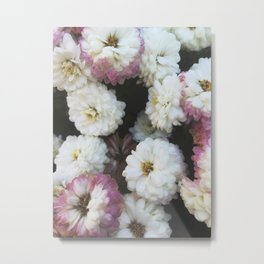 Romantic Petals Metal Print
