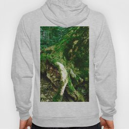 Move If You Want Photography Hoody