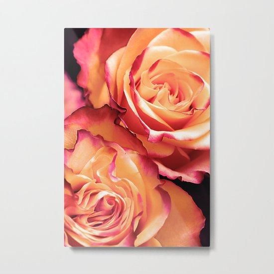 Romantic roses(13) Metal Print