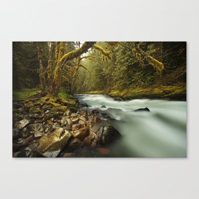 Brook Canvas Print