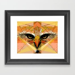 Eagle Eyes Framed Art Print