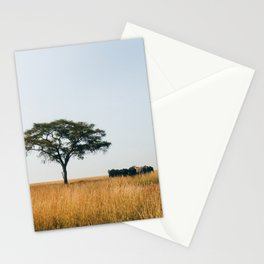 African Summer Stationery Cards