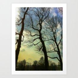 Remembering a winter sky Art Print