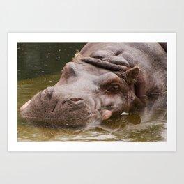 Huge bored Hippopotamus Art Print