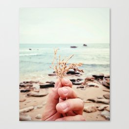 Ocean Stuff Canvas Print