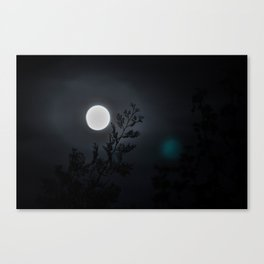 Beneath the full moon Canvas Print