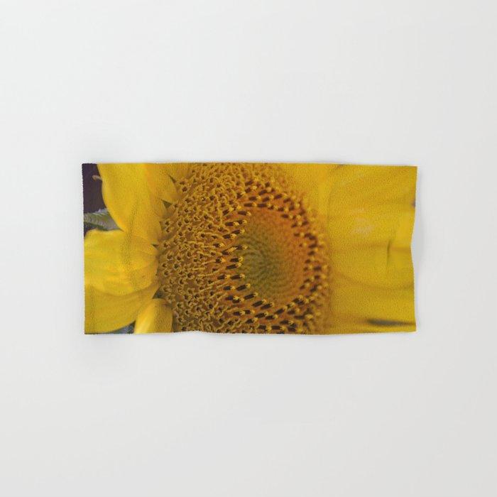 Sunflower close up Hand & Bath Towel