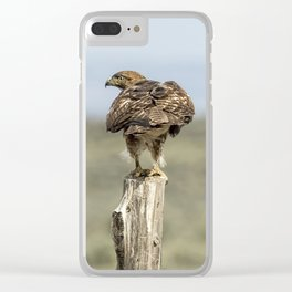 Red-Tailed Hawk Preparing to Fly Clear iPhone Case