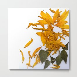 Sunflower 02 Metal Print