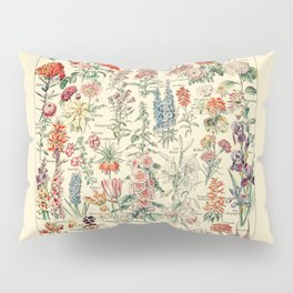 Vintage Floral Drawings // Fleurs by Adolphe Millot 19th Century Science Textbook Artwork Pillow Sham