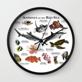 Animals of the Red Sea Wall Clock