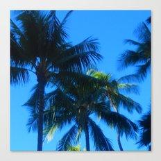 Oahu: Some Trees Canvas Print
