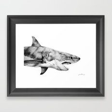 Great White Shark Framed Art Print