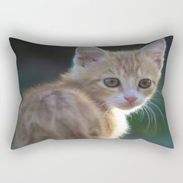 Gatto Rosso - Red Cat Rectangular Pillow