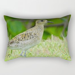 Pacific Golden Plover Rectangular Pillow