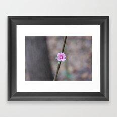 Tiny Framed Art Print