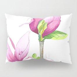 Spring 2 Pillow Sham