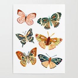 Garden Butterflies Poster